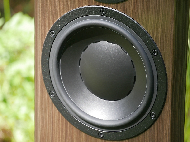 Dynaudio Special Forty Bass